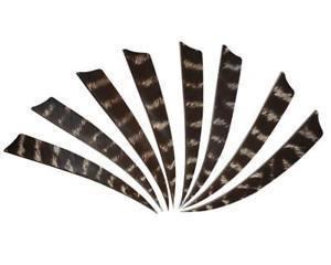 Plumes-dindon-bearpaw-naturelle-4 pouces-shield-parabolique